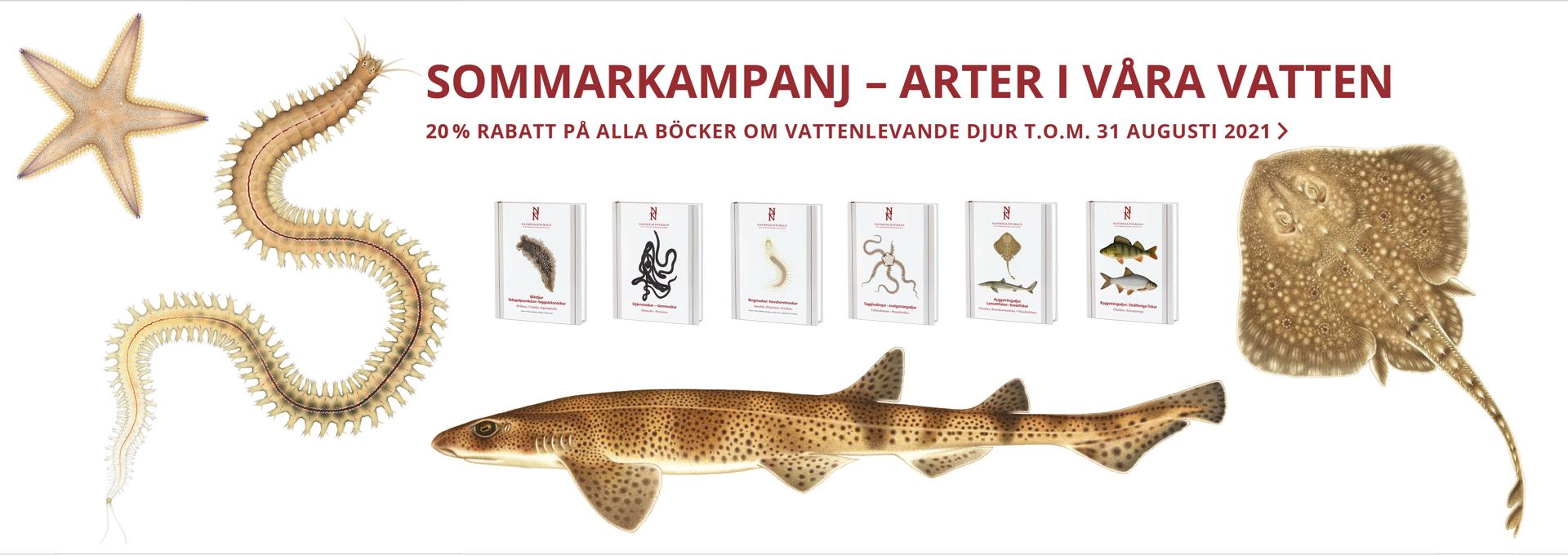 Illustrationer i färg på fiskar och sjöstjärna och sex bokomslag